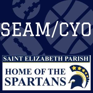 SEAM Volleyball Registration