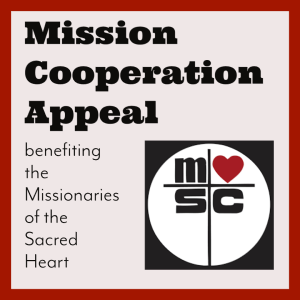 Mission Cooperation Appeal